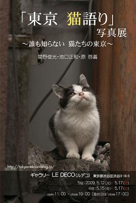 「東京 猫語り」.jpg