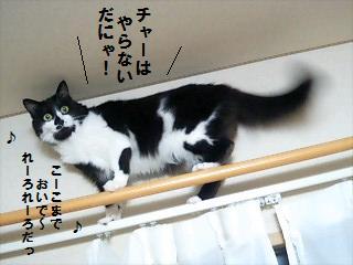 はみがき3.jpg