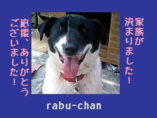 rabu-chan2.jpg